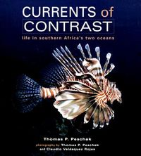 Currents of Contrast
