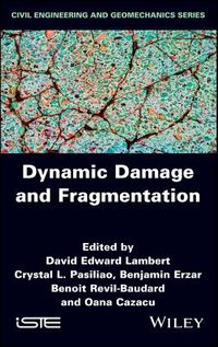 Dynamic Damage and Fragmentation