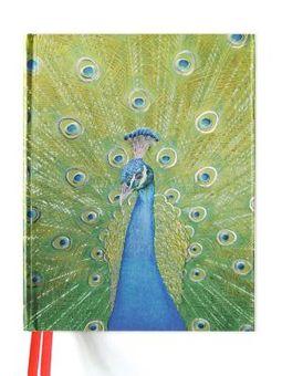 Peacock Blank Sketch Book