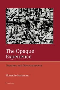 The Opaque Experience