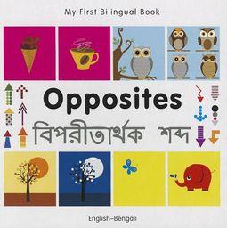 Opposites English-bengali