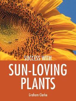 Success With Sun Loving Plants