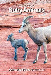 Our Arizona Baby Animals/ Animales Bebes de Arizona