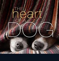 The Heart of a Dog
