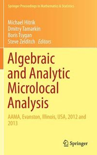 Algebraic and Analytic Microlocal Analysis