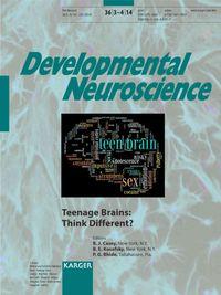 Teenage Brains
