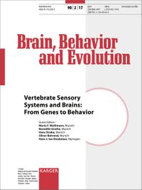 Vertebrate Sensory Systems and Brains