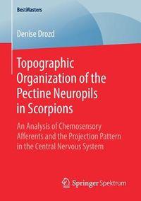 Topographic Organization of the Pectine Neuropils in Scorpions