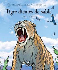Tigre dientes de sable / Sabertooth Tiger