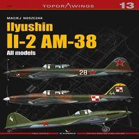 Iiyushin Ii-2 Am-8