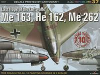 Last Hope of the Luftwaffe