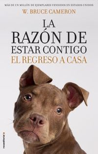 La Raz?n De Estar Contigo  /  Every Dog Happens for a Reason