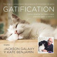 Gatification / Catification