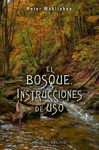 El Bosque / The Forest