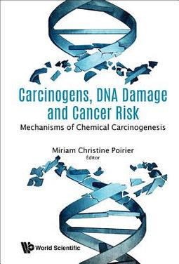 Carcinogens, DNA Damage and Cancer Risk